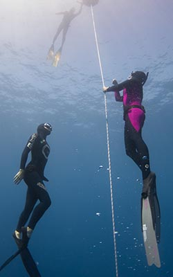 About Freediving
