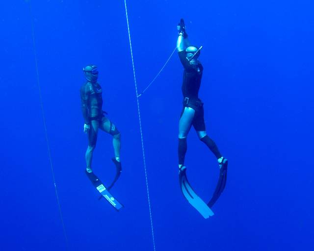 Freediving training with FII Professionals. www,freedivinginstructors.com