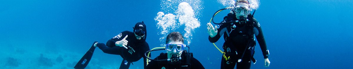 Contact Us - Freediving Instructors International