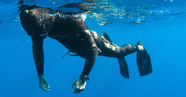 Freediving…. To breathe or not to breathe?