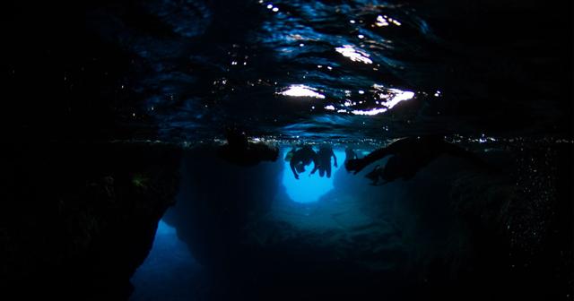 Freediving: FII Blog