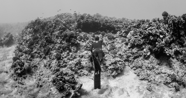 Freediving ...what a drag!
